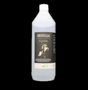 Animalia Equidae 1 L